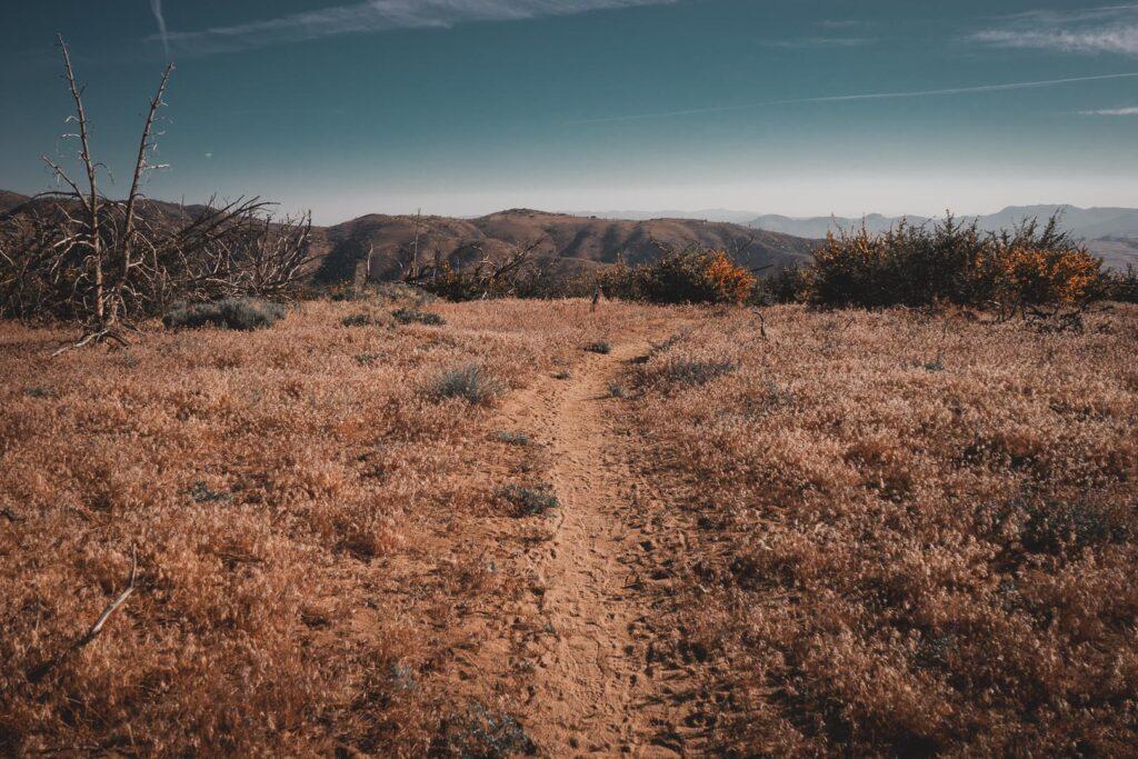 Mohave woestijn op de Pacific Crest Trail